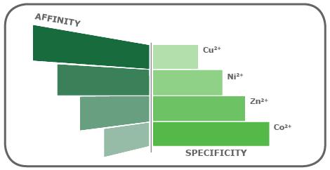 図2. 【IMACで使用される金属イオンのアフィニティと特異性】