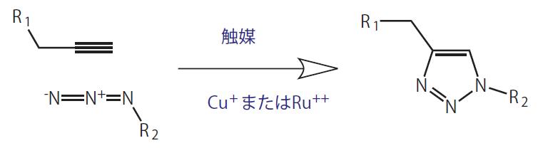 図1. クリック反応