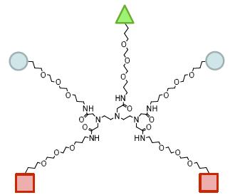 図4. 3種類の異なる官能基および保護されたアミンを有する第一世代の5価のPEGに基づくデンドリマー
