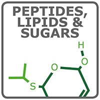 ペプチド、脂質および糖