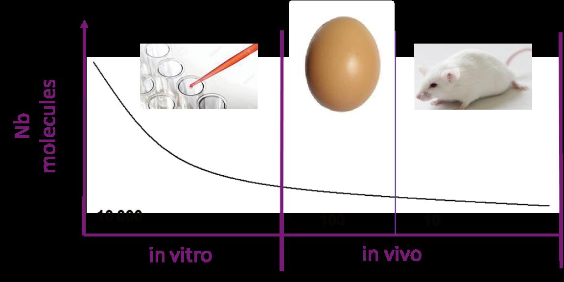 図1. 鶏胚を用いた技術のポジション