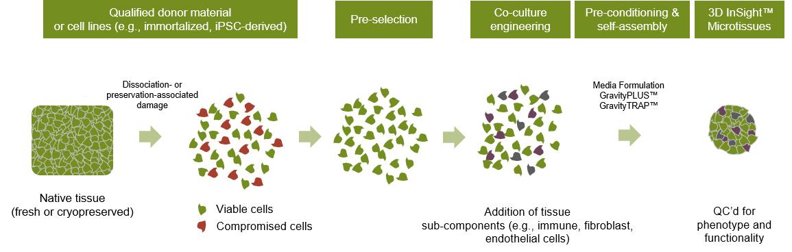 図 2. 3D Select™ プロセスの詳細