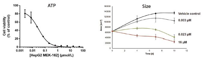 図1. HepG2マイクロティッシュを用いたATPによる用量反応曲線(左)およびサイズによる容量依存的な成長曲線(右)。MEK阻害剤Binimetib (MEK-162) の有効性が示されています。