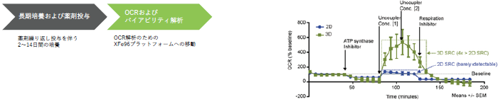 3D InSight™ ミトコンドリア毒性評価試験 | 株式会社ビジコム ...