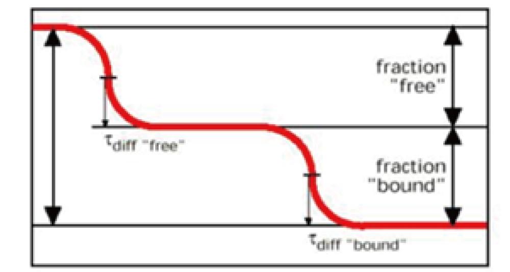 図3. 非結合状態と結合状態のラベル済み低分子化合物の割合