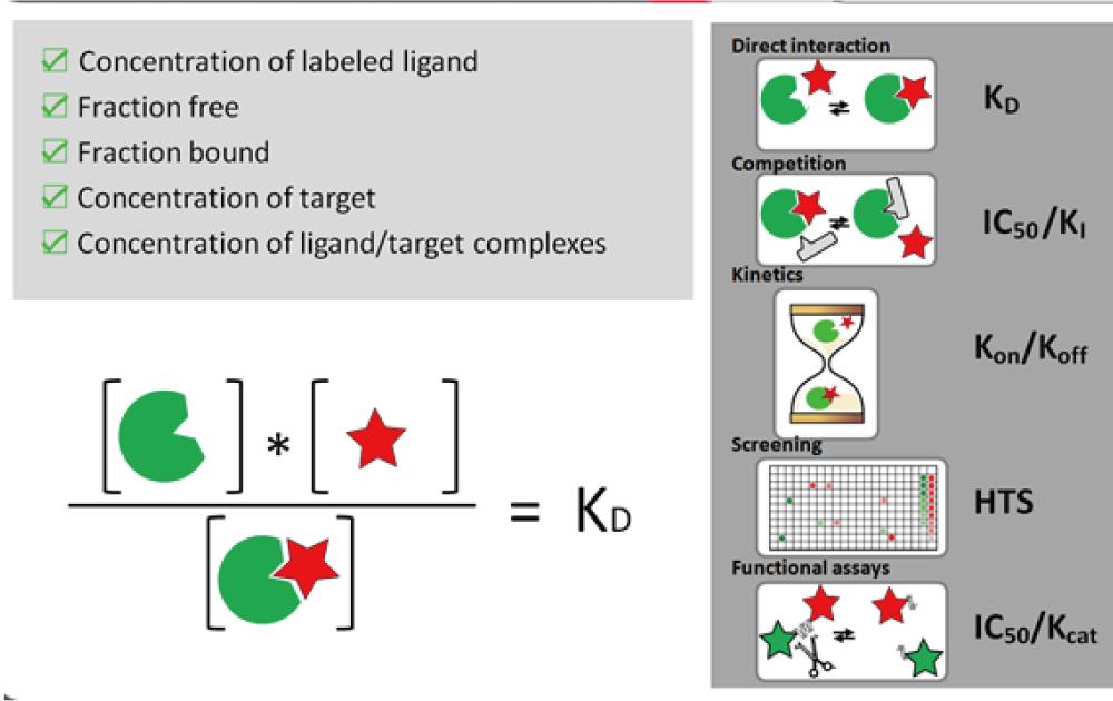 図5. Kdの測定イメージ