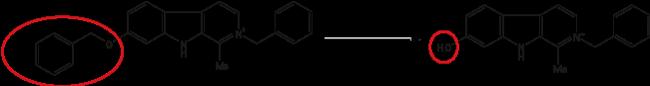 図2. シトクロムP450アイソザイム3A4と1B1により優先的に代謝されます