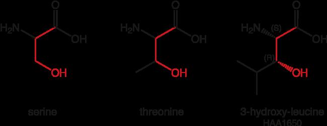 図1. ご用意可能なペプチドミメティックや創薬化学用アミノ酸類縁体の例