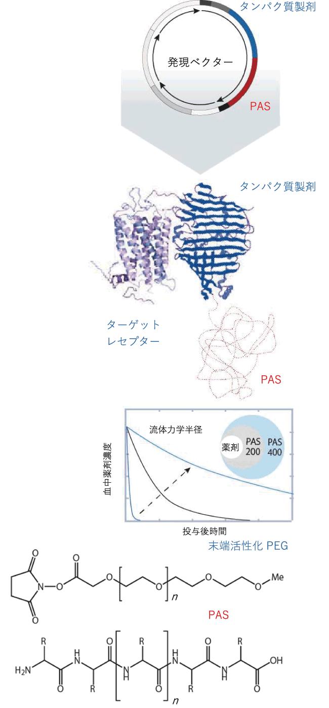 図1. 遺伝子組み換えによる新たな手法