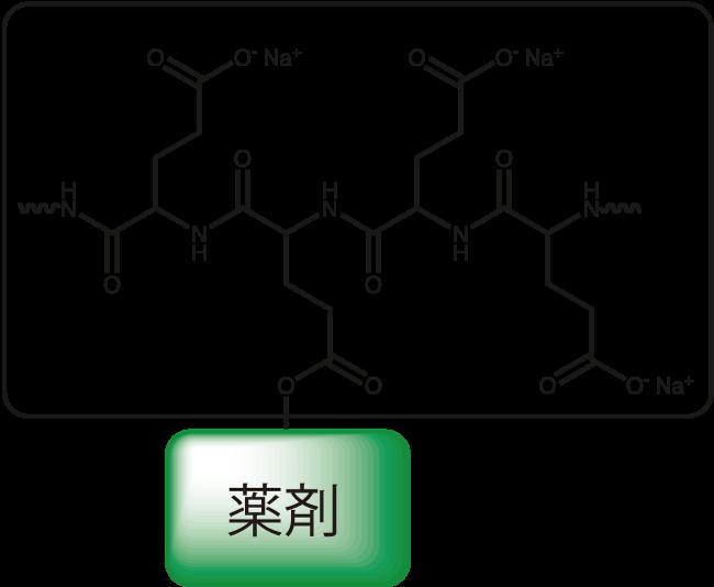 図1. ポリグルタミン酸と薬剤のコンジュゲート