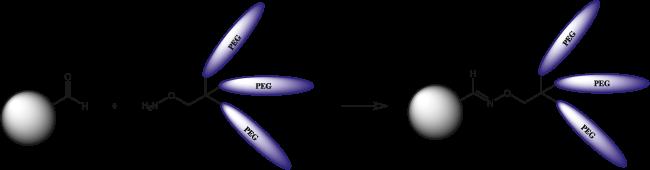 図1. ホルミル基は糖たんぱく質等においてよく見られる官能基で、人工的に導入することも可能です。