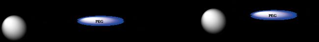 図5. 末端カルボニル基に対する手順例