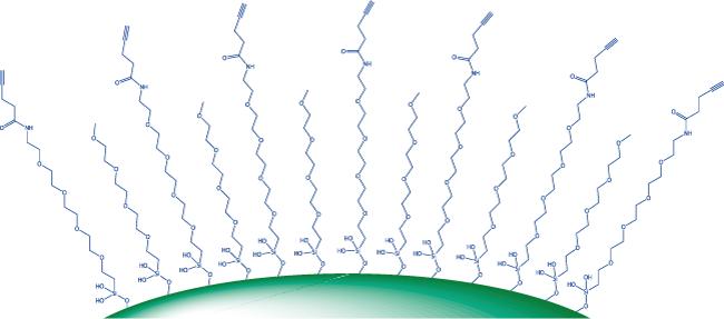 図1. 適切なPEGシラン試薬を用いて表面修飾し、末端のアルキンを利用したクリック反応によって分子を結合することが可能です。