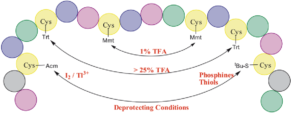 図1. 直交関係にある脱保護条件