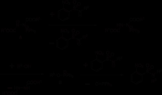 図3. 光延反応を用いたスルホンアミドのアルキル化の反応機構の略図