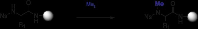 図6. プロトコル7:ジメチル硫酸を用いた N-メチル化