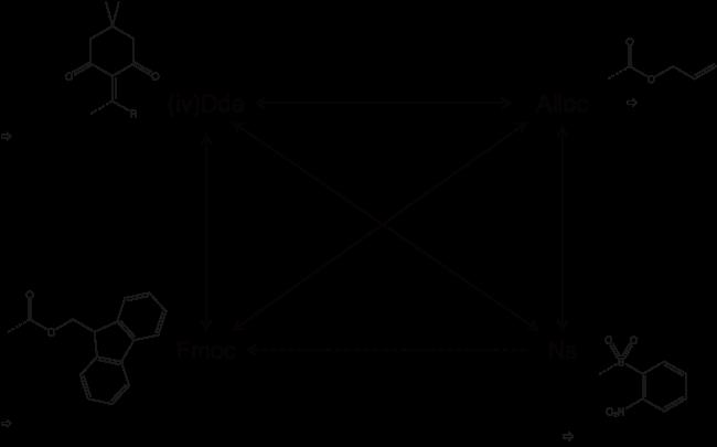 図1. 標準的なペプチドの酸感応性レジン上のFmoc固相合成で用いる直交な関係にあるアミン保護基の相関図