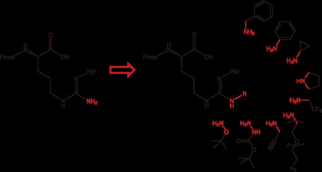 図1. アルギニン類縁体の変換例