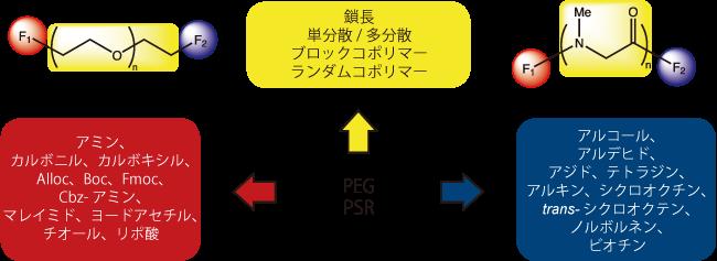 図1. PEGとPSRの誘導体化に関して選択可能なオプション