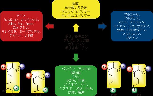 図1. Arg、Glu、Lys、Ornを用いた側鎖合成に関して選択可能なオプション
