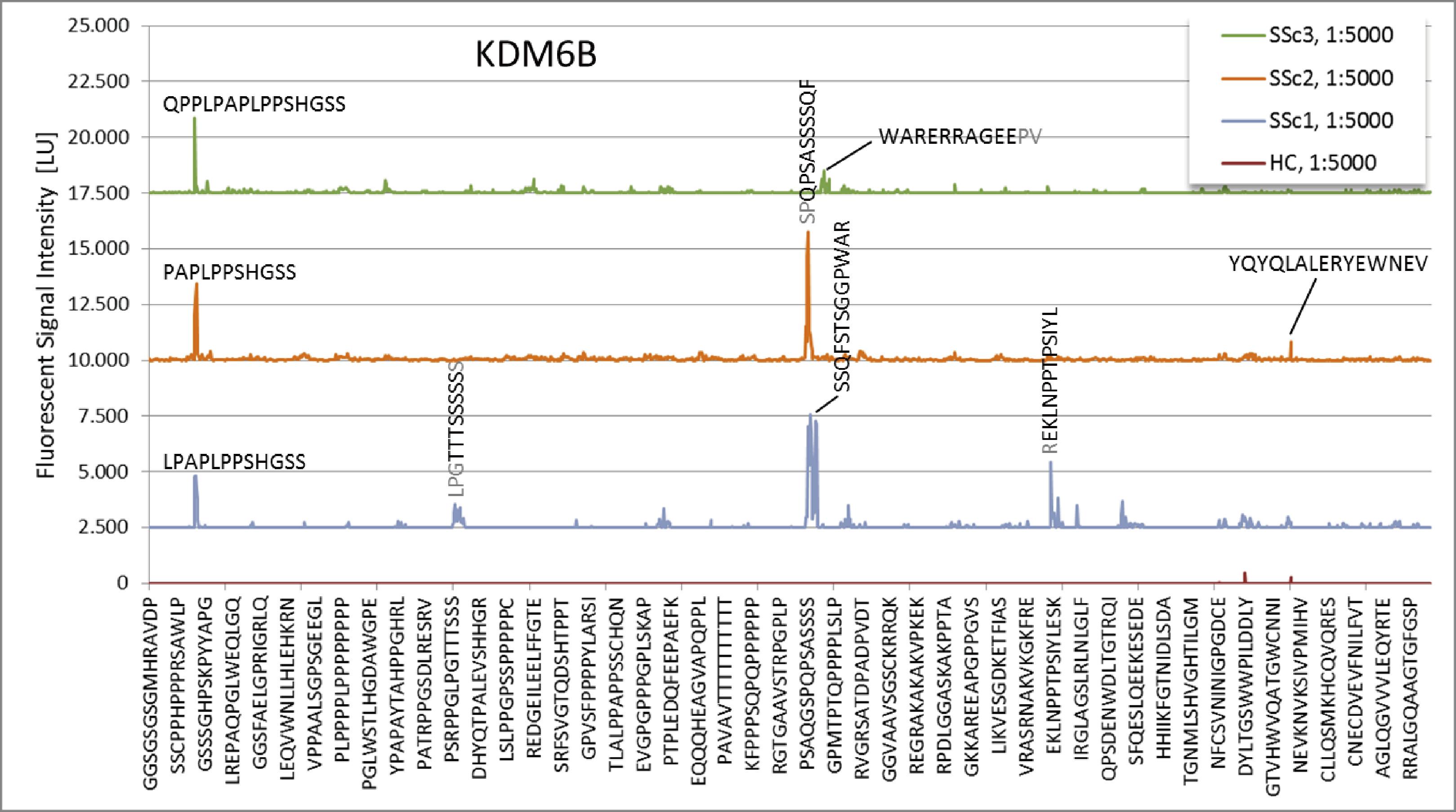図3. KDM6Bペプチドの強度プロットの結果