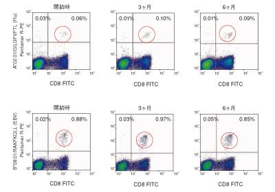 図4. 同一ドナーの末梢血単核球細胞 (PBMC)に対する2種のR-PE標識Pro5 ペンタマーの安定性試験